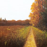 Autumn Orange Path2.jpg