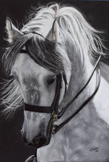 White Horse 2016.JPG.jpg