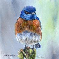 1041. Western Bluebird Original Bird Acrylic Painting by Janet M Graham.jpg