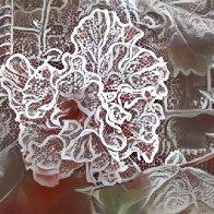 Digital Hibiscus 01.jpg