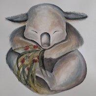 Cuddles Koala.jpg