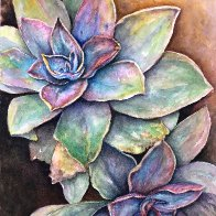 Twin Succulents Reworked.jpg