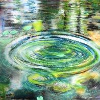 ronds dans l'eau 2.JPG