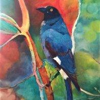 tropical bird.jpg